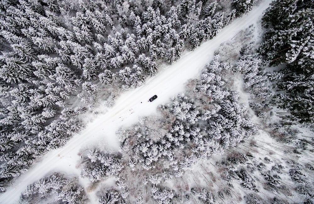 Winter Forest © Martins Vanags / Shutterstock.com