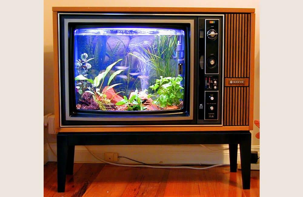 Old TV Into Aquarium @theproductfarm / Pinterest.com
