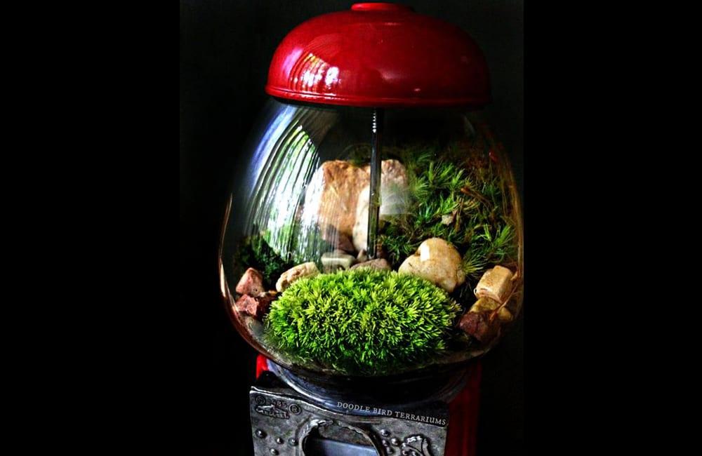 Gumball Machine Into Greenhouse @urgoodbuyz / Pinterest.com