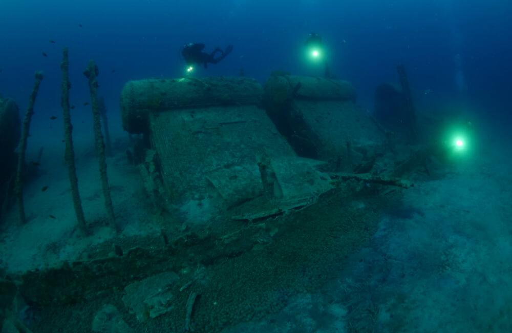 The British Seabed @scubadesign / Shutterstock.com