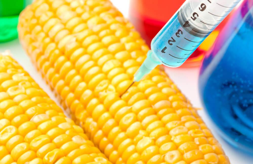 Insecticide Corn ©wavebreakmedia / Shutterstock.com
